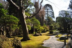 Nikon Digital Camera D700 晩冬の日本庭園