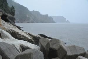 Nikon Digital Camera D700 晩秋と雨