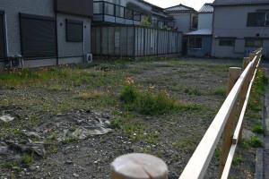 Nikon Digial Camera 早朝の空き地 ※雑草君たちが朝日に光っておりました☆