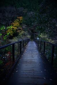 Nikon Digital Camera 秋の空気=あきのくうき=Autumn Atmosphere