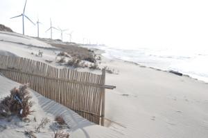 Nikon Digital Camera D700 防砂の竹垣と風車☆