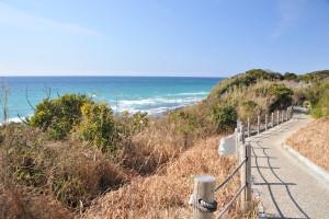 Nikon Digital Camera D700 晴天の散歩道