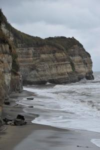 Nikon Digital Camera D700 晩秋の海岸線=ばんしゅうのかいがんせん ※季節によっては変化する植物の葉色☆今の時期は茶色がかっていて、こちらもなんだか侘しくて見ごたえがありますね(^^;