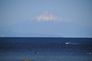 Nikon Digital Camera D700 早春のワカメ漁と富士☆ ※南北に長い日本列島は、世界一豊かな海ということが判明したそうです(バクテリア~哺乳類など含め)。驚きですよね(^^; 様々な要因があるようですが、代表的なものが植物の葦(アシ)などから出る鉄分がエネルギー源となり、 「植物プランクトン→動物プランクトン→小魚→大きな動物・魚類」というのが多様性のカギのようです。冬の荒波なども、海底にたまった栄養分を植物プランクトンに渡す役割があるそうですよ。 世界一と認められた多様性が、陸の植物とつながっていてなんだか嬉しいですね~♪