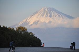 Nikon Digital Camera D700 松と夕方の富士☆