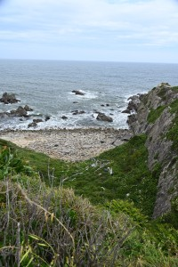 Nikon Digital Camera  初夏の風吹く岬