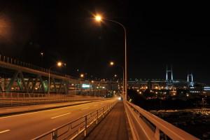 Nikon Diital Camera D700 夜の緑地帯とベイブリッジ☆