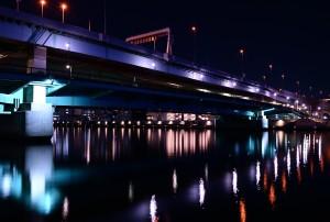 Nikon  Digital Camera  樹影と墨田川大橋=じゅえいとすみだがわおおはし=Tree Shadows and Sumigawaga Ohashi Bridge
