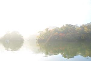 Nikon Digital Camera 朝霧と秋=あさぎりとあき
