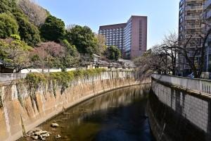 Nikon Digital Camera 芽吹き前の神田川=めぶきまえのかんだがわ ※3月16日頃に撮影いたしました☆ 駒塚橋(こまつかばし)という比較的に大塚に近いエリアの場所です(^^) 配達の通り道でシャッターをきらせていただきました♪