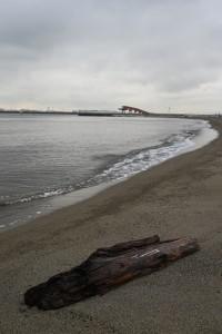 Nikon Digital Camera  梅雨の流木と東京湾 ※大田市場から程近い城南島海浜公園です☆ 奥に見えるのは羽田空港で飛行機が離陸して真上を通過していきます。 そんな文明と比べたような流木君がステキでした。