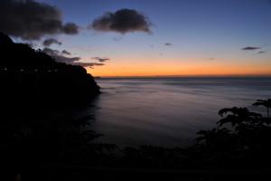 Nikon Digital Camera D700 東雲の岬と植物