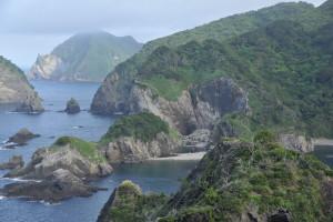 Nikon Digital Camera D700 盛夏の荒磯=せいかのあらいそ ※海からの湿った風が当たる場所が好きな植物たちが生えていますね。ですが、四季の激しい変化に対応したり、侵食にあったり....植物ちゃんたちも生きるのは中々に大変な様子ですね~(^^;