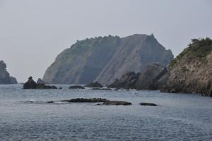 Nikon Digital Camera D700 野生の植物と奇岩