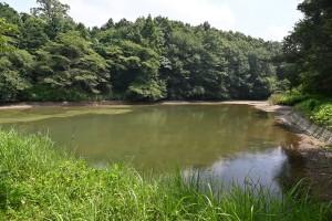 Nikon Digital Camera 真夏の養魚沼