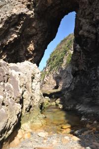 Nikon Digital Camera D700 奇岩と黒松=きがんとくろまつ