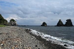 Nikon Digital Camera 海浜植物と海岸=かいひんしょくぶつとかいがん ※黒松、ビャクシン、ウバメガシ、ハマゴウ、ヤブツバキ、ハマボウ、ハマユウ、ハマヒルガオ、トベラ、ヨシ、シバ....etc....などでしょうか(^^; 目につく植物から覚えて、言えるようになると楽しくなってくる気がします♪ 自粛が終わったらLet's 冒険!