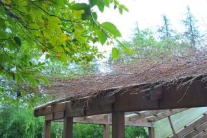 Nikon Digital Camera 竹箒と雨粒=たけぼうきとあまつぶ=Bamboo Broom and Raindrops