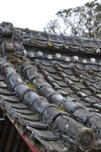 Nikon Digital Camera D700 鐘楼の瓦=しょうろうのかわら ※草などが生えて侘しさが漂う雰囲気ですね。富貴蘭(日本特産のラン科の植物)のハンターさんなどは、古い建物の屋根や樹木の幹・枝などを見るクセがあるそうです。 珍しい品種の発見を期待してのことです。お客様から教えていただいた嬉しい知識でした(^^)/